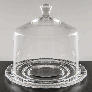 Small glass dome with plate