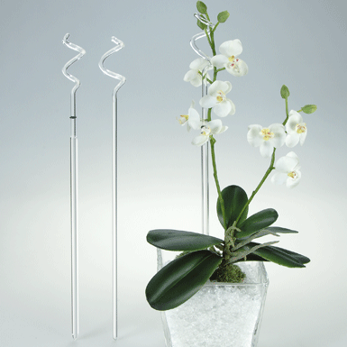 Orchid pole